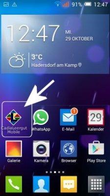 mobile Ladegutverwaltung